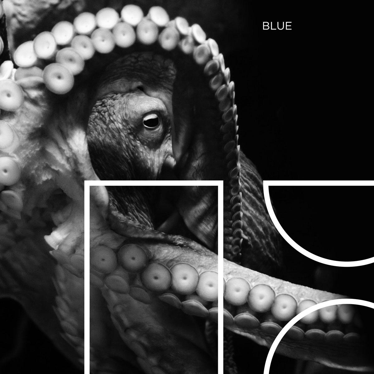 Mal Fantôme | On Fire - Available on Spotify, Apple Music, Deezer, YouTube, etc.